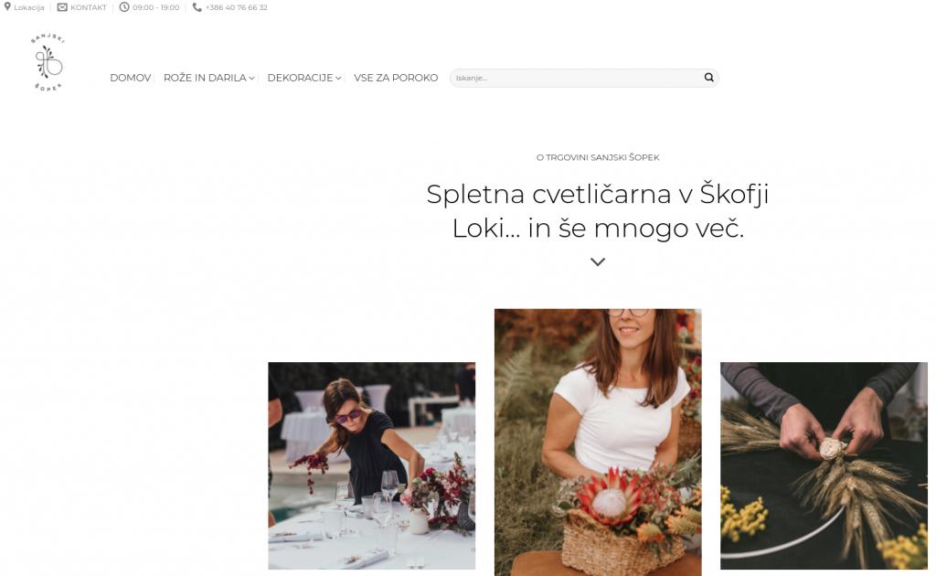 izdelava spletne trgovine Sanjski Sopek